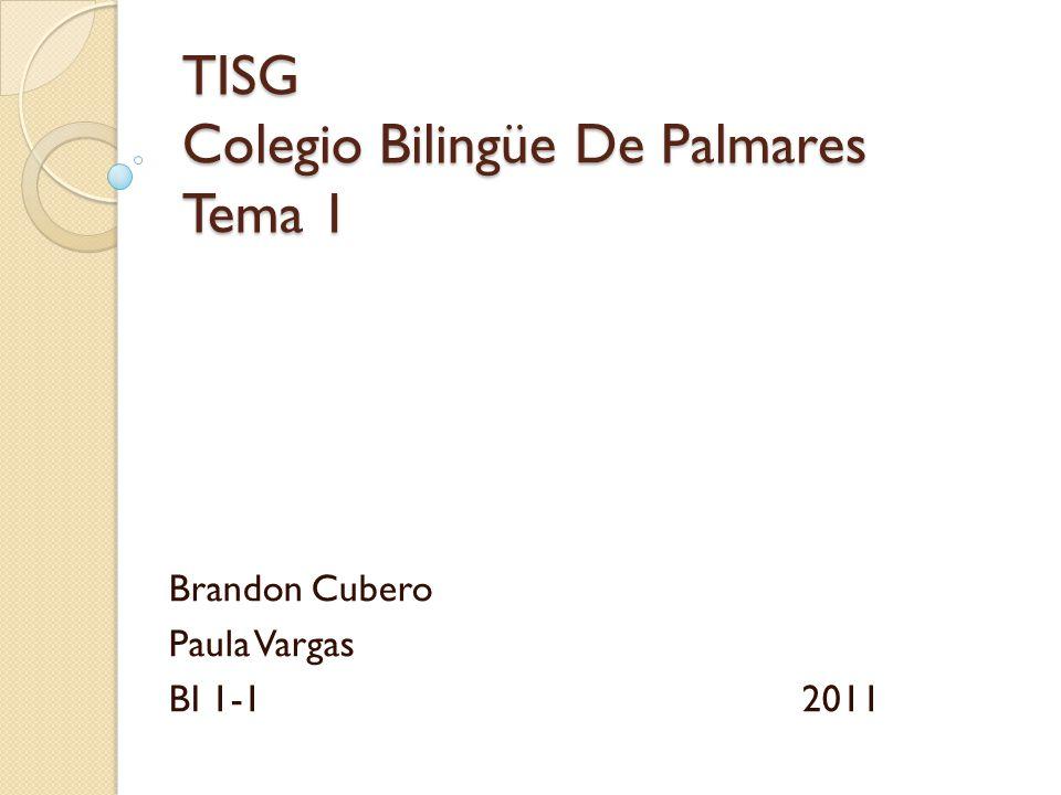 TISG Colegio Bilingüe De Palmares Tema 1 Brandon Cubero Paula Vargas BI 1-12011