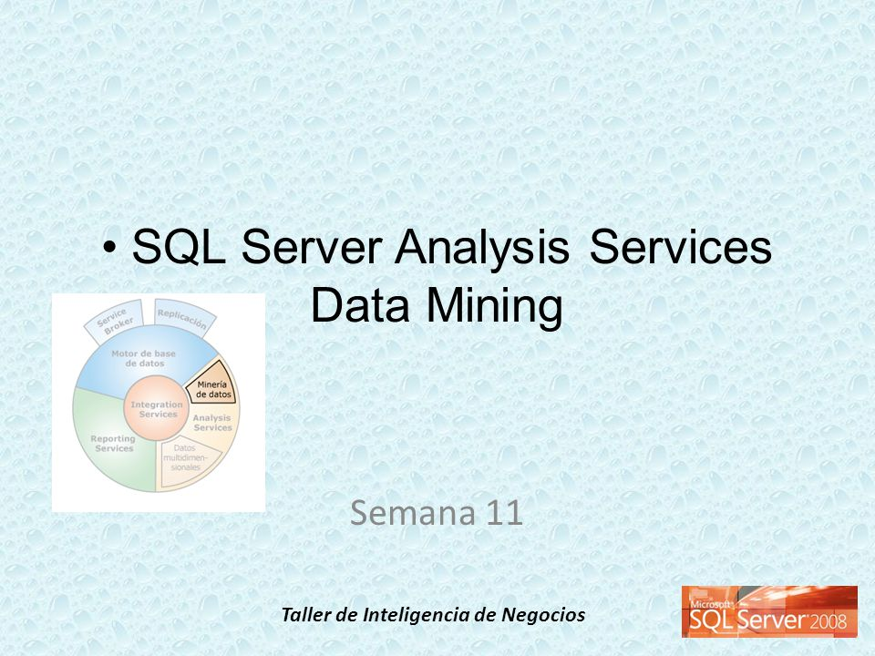 Taller de Inteligencia de Negocios SQL Server Analysis Services Data Mining Semana 11