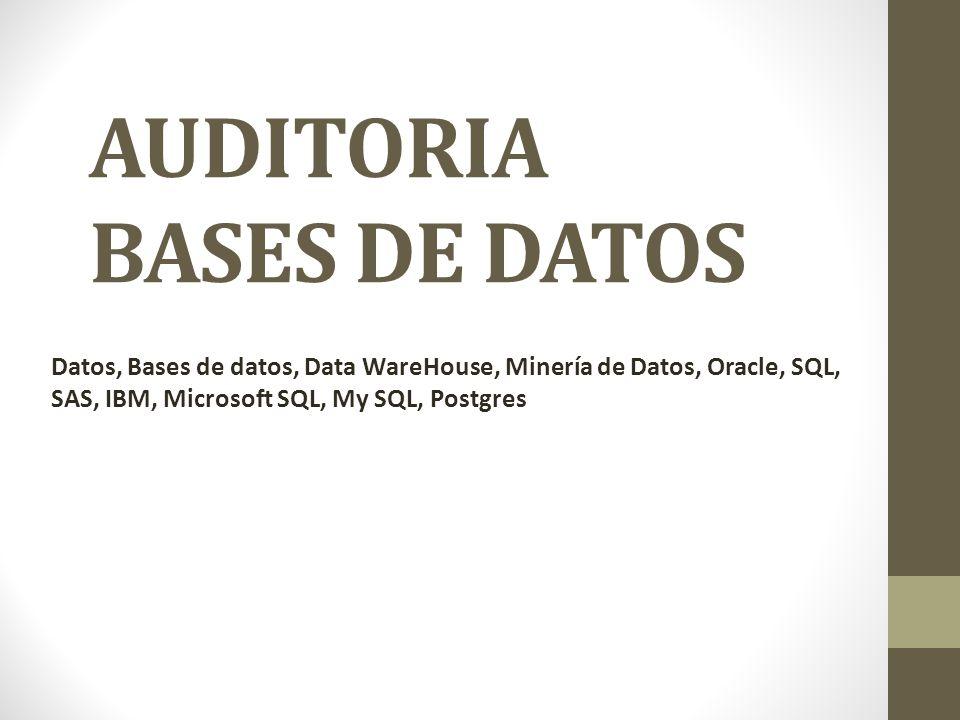 AUDITORIA BASES DE DATOS Datos, Bases de datos, Data WareHouse, Minería de Datos, Oracle, SQL, SAS, IBM, Microsoft SQL, My SQL, Postgres