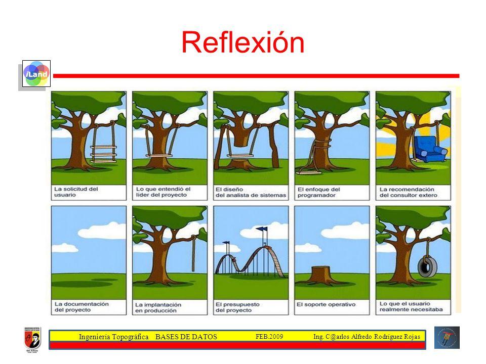 Ingeniería Topográfica BASES DE DATOS Ing. C@arlos Alfredo Rodríguez RojasFEB.2009 Reflexión