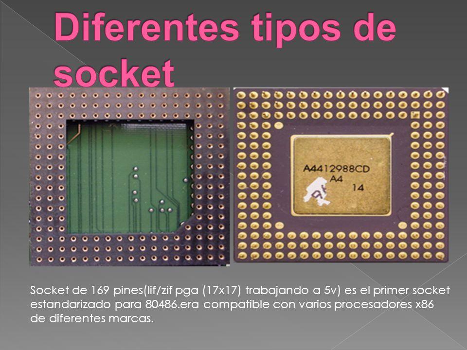 Socket de 169 pines(lif/zif pga (17x17) trabajando a 5v) es el primer socket estandarizado para 80486.era compatible con varios procesadores x86 de di