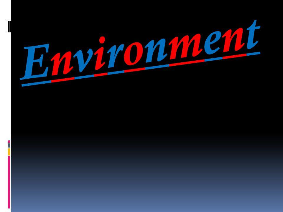 EnvironmentEnvironment