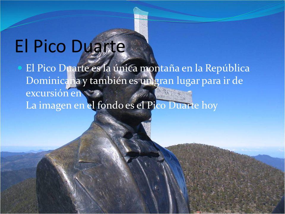 El Pico Duarte El Pico Duarte es la única montaña en la República Dominicana y también es un gran lugar para ir de excursión en La imagen en el fondo es el Pico Duarte hoy