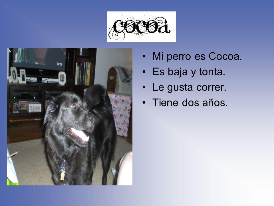 Mi perro es Cocoa. Es baja y tonta. Le gusta correr. Tiene dos años.