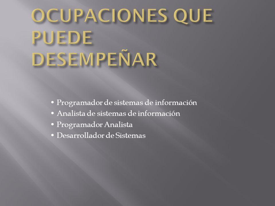 Programador de sistemas de información Analista de sistemas de información Programador Analista Desarrollador de Sistemas