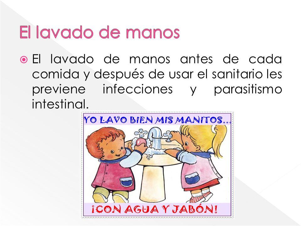 El lavado de manos antes de cada comida y después de usar el sanitario les previene infecciones y parasitismo intestinal.