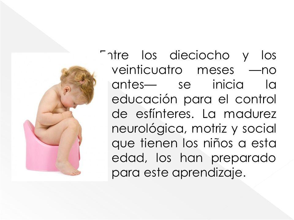 Entre los dieciocho y los veinticuatro meses no antes se inicia la educación para el control de esfínteres. La madurez neurológica, motriz y social qu