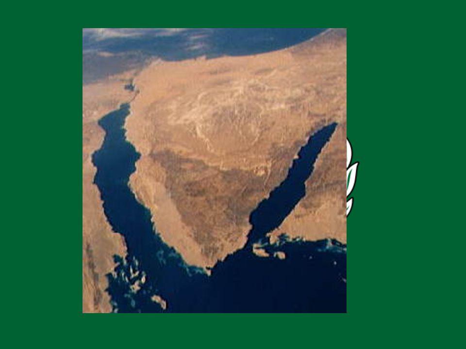 MITO «Egipto terminó la guerra de desgaste, y procuró llegar a algún acomodo con Israel, sólo para que Israel rechazara esas iniciativas».