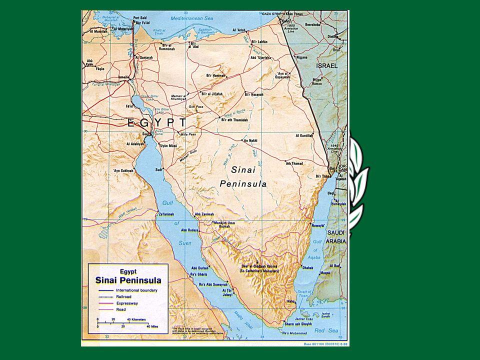 La guerra comenzó en junio de 1968 con el bombardeo por parte de la artillería egipcia de las líneas del frente israelí instaladas en la margen oriental del Canal de Suez.