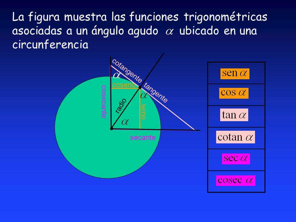 La figura muestra las funciones trigonométricas asociadas a un ángulo agudo ubicado en una circunferencia secante cosecante radio seno tangente cotangente coseno