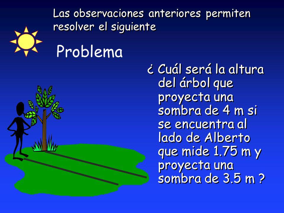 Las observaciones anteriores permiten resolver el siguiente ¿ Cuál será la altura del árbol que proyecta una sombra de 4 m si se encuentra al lado de Alberto que mide 1.75 m y proyecta una sombra de 3.5 m .