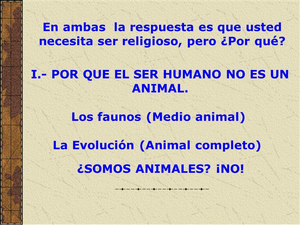 ¿Por qué el hombre no es un animal.