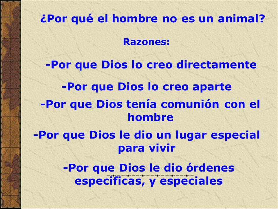 El hombre es Religioso por que necesita a Dios.