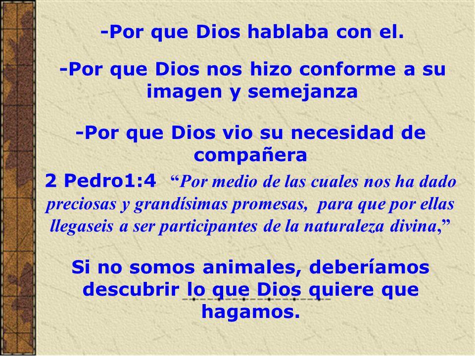 II.-POR QUE LA BIBLIA NO ES UN CUENTO DE HADAS La Biblia no es una colección de cuentos de hadas.