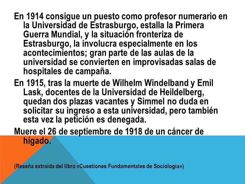 En 1914 consigue un puesto como profesor numerario en la Universidad de Estrasburgo, estalla la Primera Guerra Mundial, y la situación fronteriza de E