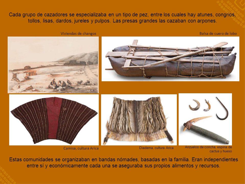 Camisa, cultura Arica Viviendas de changosBalsa de cuero de lobo Cada grupo de cazadores se especializaba en un tipo de pez, entre los cuales hay atun