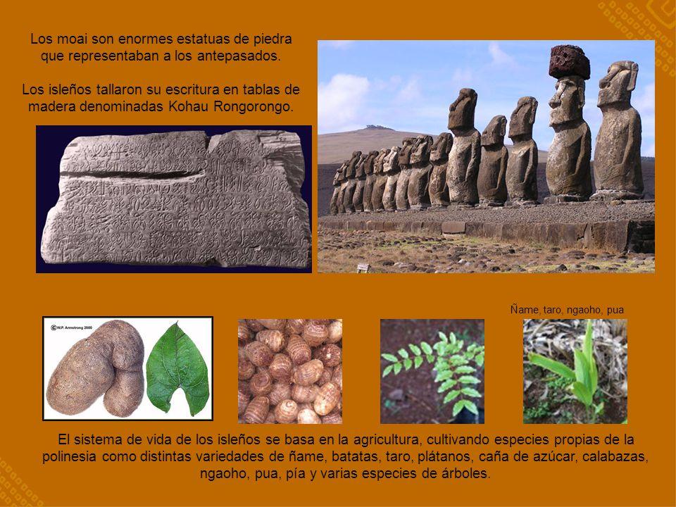 El sistema de vida de los isleños se basa en la agricultura, cultivando especies propias de la polinesia como distintas variedades de ñame, batatas, t