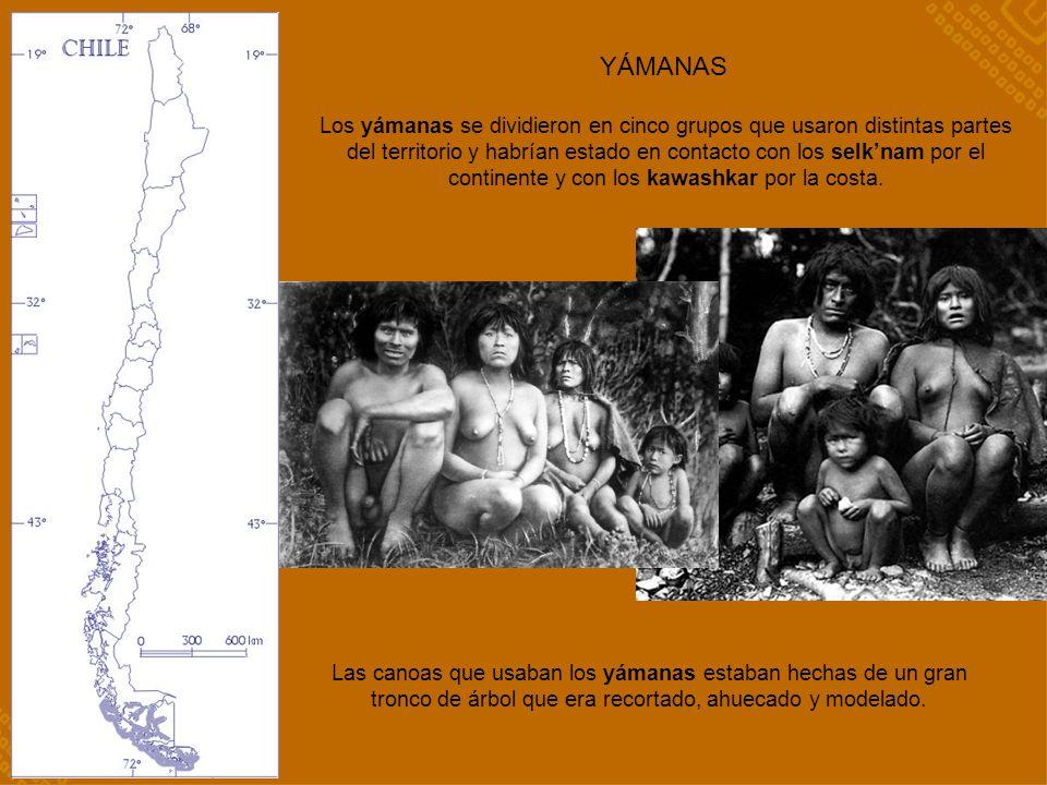 YÁMANAS Las canoas que usaban los yámanas estaban hechas de un gran tronco de árbol que era recortado, ahuecado y modelado. Los yámanas se dividieron