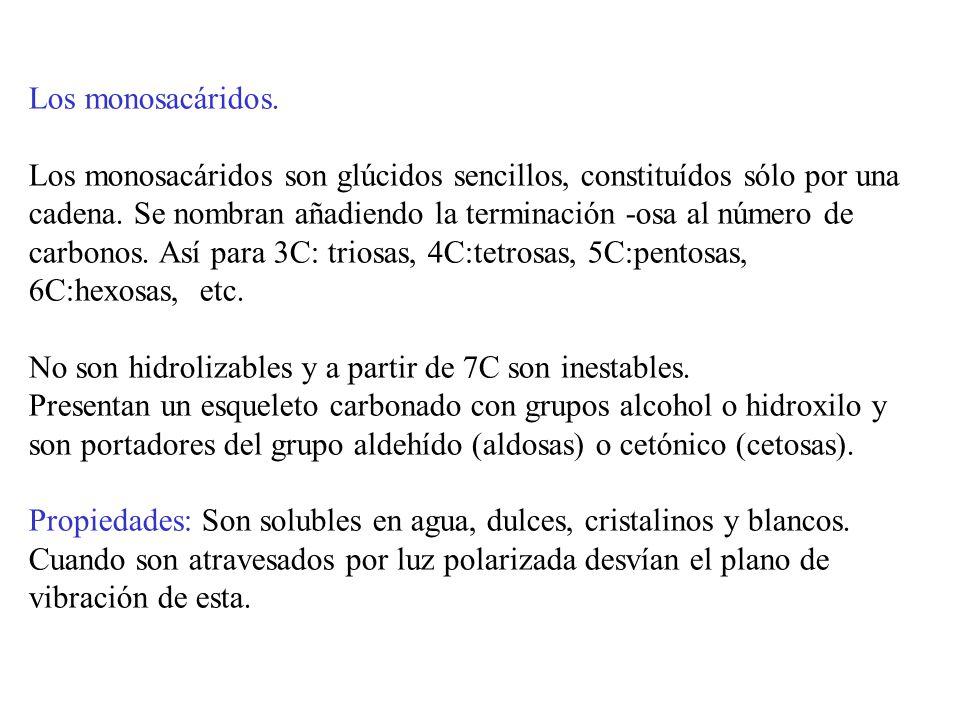 Estructura e isomerías.