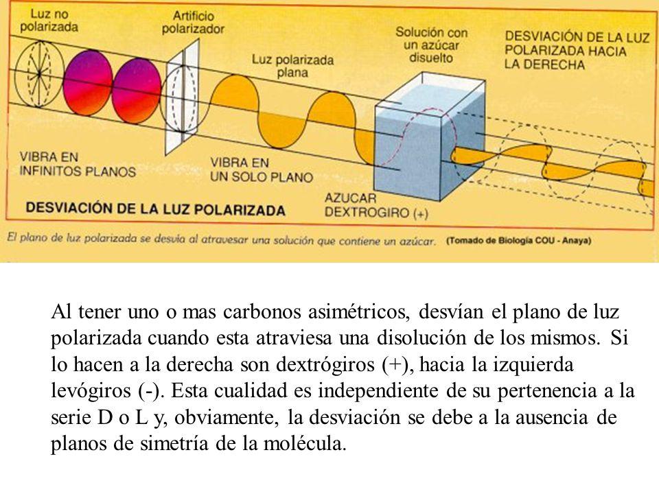 Estructura cíclica.