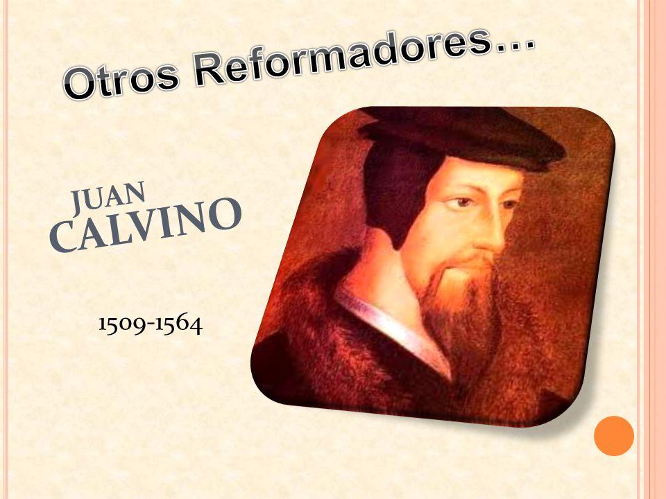 JUAN CALVINO 1509-1564