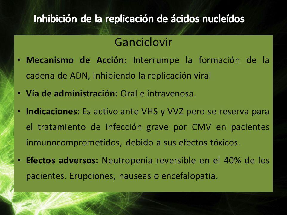 Ganciclovir Mecanismo de Acción: Interrumpe la formación de la cadena de ADN, inhibiendo la replicación viral Vía de administración: Oral e intravenos