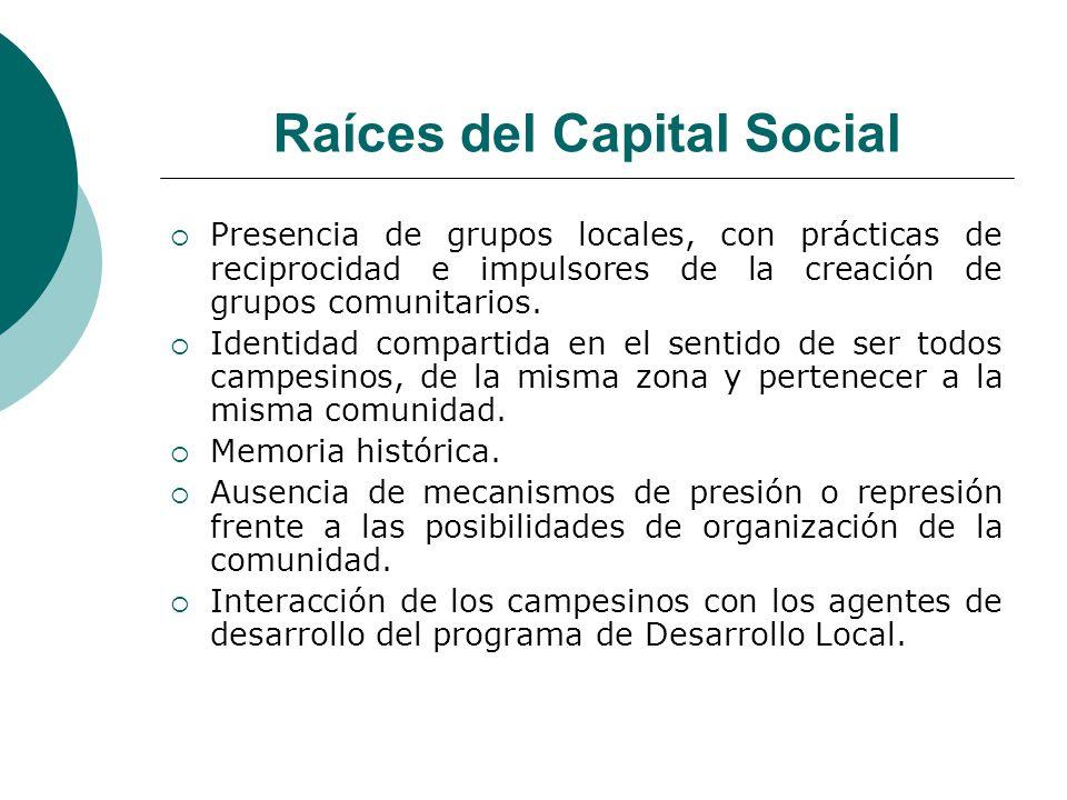 Raíces del Capital Social Presencia de grupos locales, con prácticas de reciprocidad e impulsores de la creación de grupos comunitarios. Identidad com