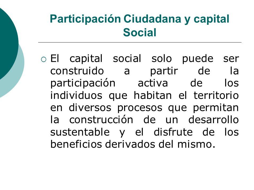Participación Ciudadana y capital Social El capital social solo puede ser construido a partir de la participación activa de los individuos que habitan
