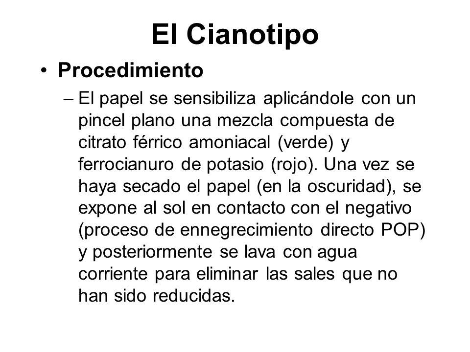 El Cianotipo Procedimiento –El papel se sensibiliza aplicándole con un pincel plano una mezcla compuesta de citrato férrico amoniacal (verde) y ferrocianuro de potasio (rojo).