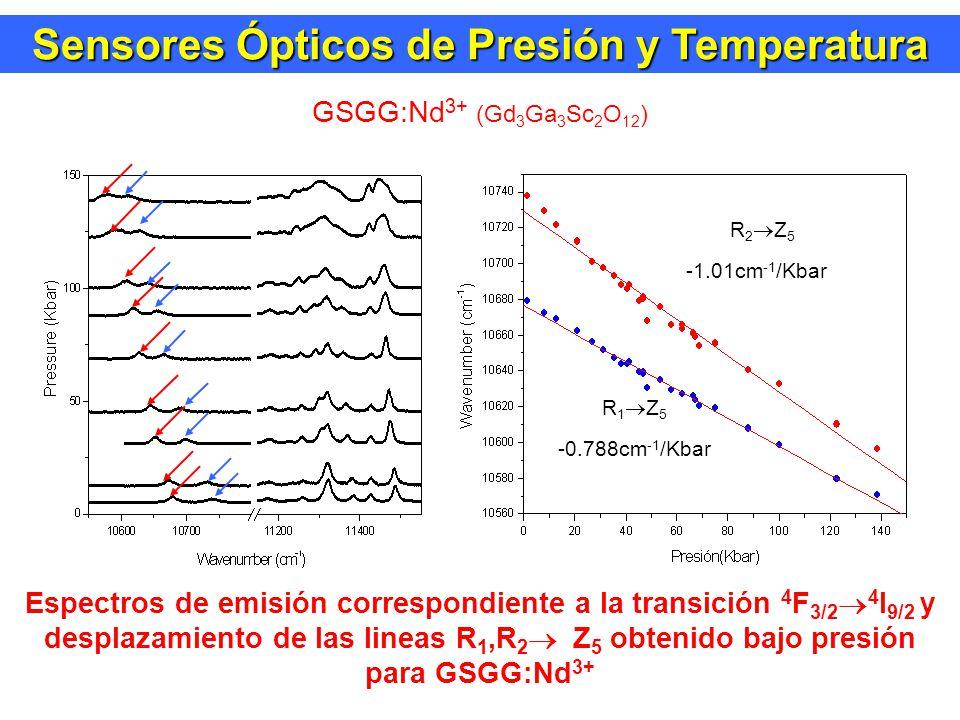 GSGG:Nd 3+ (Gd 3 Ga 3 Sc 2 O 12 ) Espectros de emisión correspondiente a la transición 4 F 3/2 4 I 9/2 y desplazamiento de las lineas R 1,R 2 Z 5 obtenido bajo presión para GSGG:Nd 3+ R 2 Z 5 -1.01cm -1 /Kbar R 1 Z 5 -0.788cm -1 /Kbar Sensores Ópticos de Presión y Temperatura