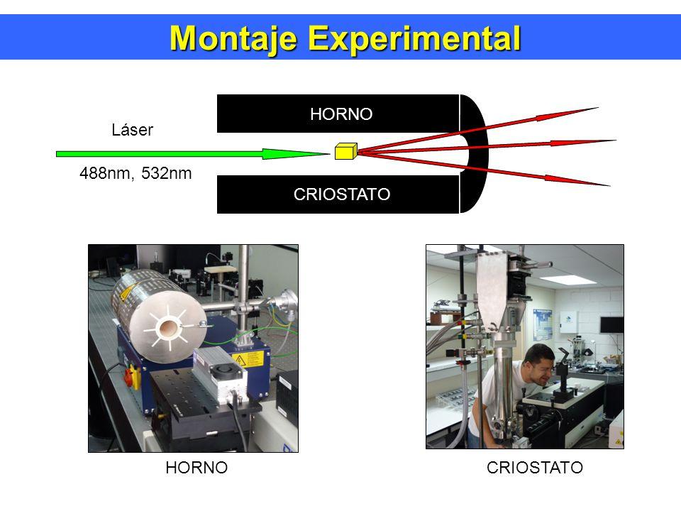 Montaje Experimental Montaje Experimental Láser 488nm, 532nm HORNO CRIOSTATO HORNO