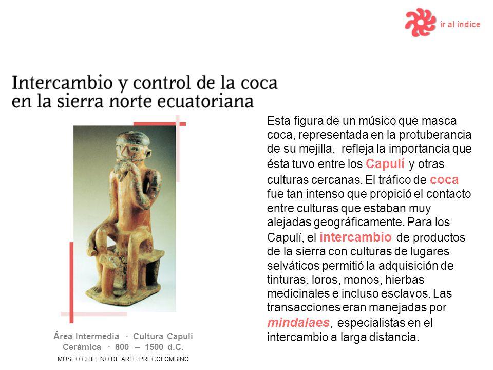 ir al índice Área Intermedia · Cultura Capulí Cerámica · 800 – 1500 d.C. MUSEO CHILENO DE ARTE PRECOLOMBINO Esta figura de un músico que masca coca, r