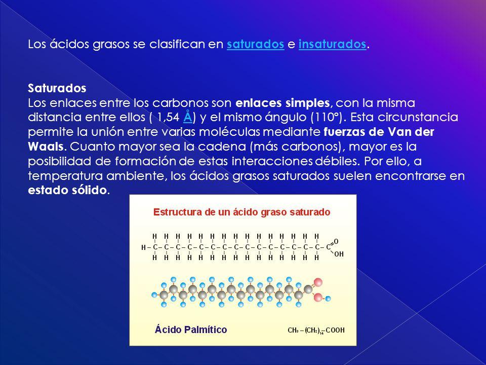 Los ácidos grasos se clasifican en saturados e insaturados. saturados insaturados Saturados Los enlaces entre los carbonos son enlaces simples, con la