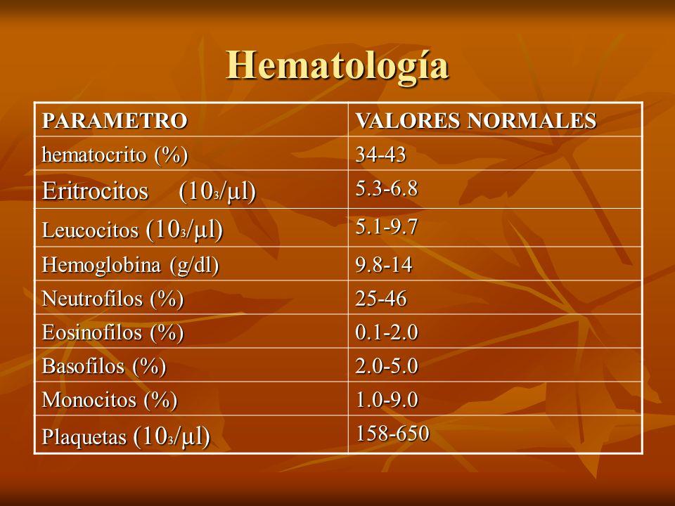 Hematología PARAMETRO VALORES NORMALES hematocrito (%) 34-43 Eritrocitos (10 3 /µl) 5.3-6.8 Leucocitos (10 3 /µl) 5.1-9.7 Hemoglobina (g/dl) 9.8-14 Ne