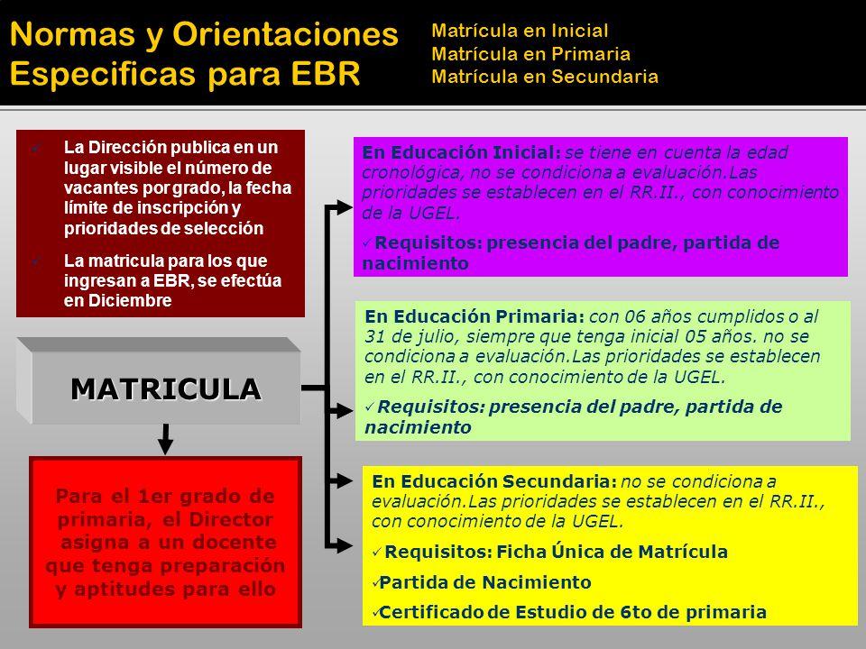MATRICULA En Educación Inicial: se tiene en cuenta la edad cronológica, no se condiciona a evaluación.Las prioridades se establecen en el RR.II., con