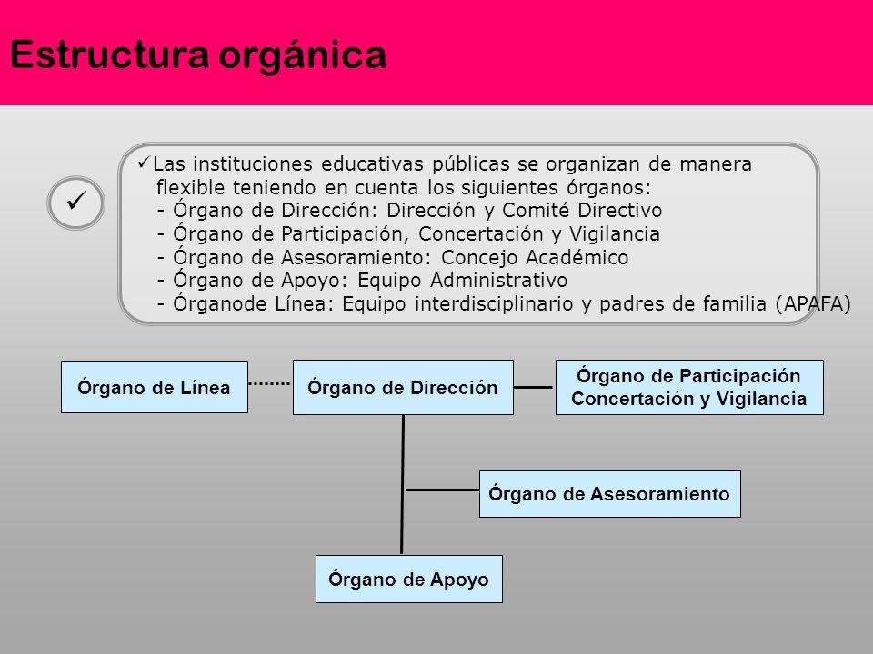 Estructura orgánica Las instituciones educativas públicas se organizan de manera flexible teniendo en cuenta los siguientes órganos: - Órgano de Direc