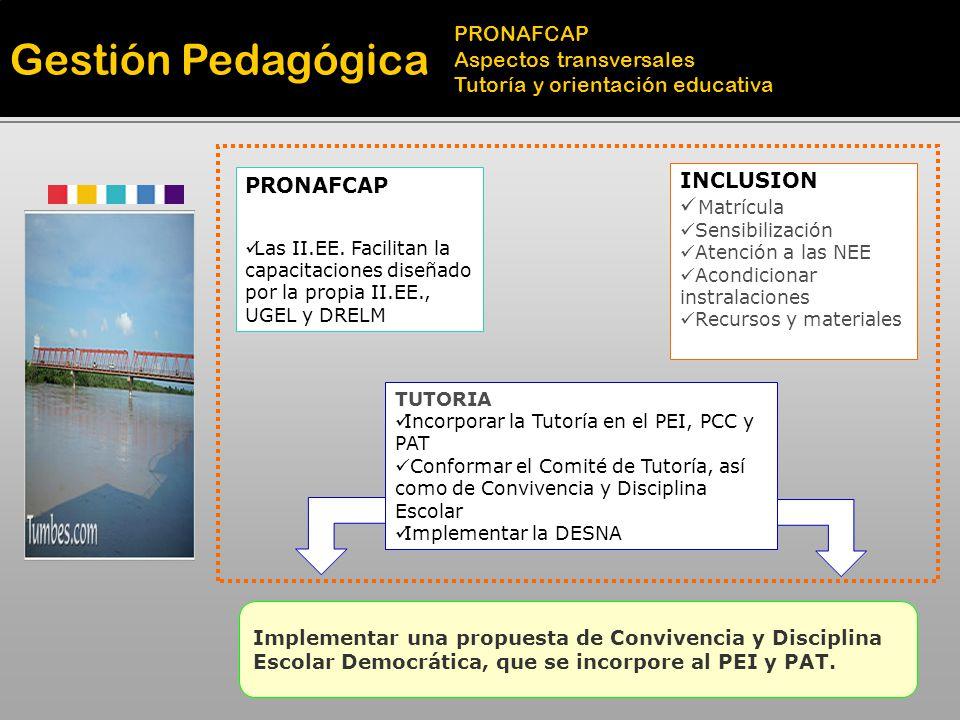 Gestión Pedagógica Educación ambiental Promoción de la cultura y el deporte TIC para mejorar los aprendizajes Desarrollar proyectos educativos ambientales integrando las diversas áreas curriculares y niveles educativos y comprometiendo a toda la comunidad educativa local.