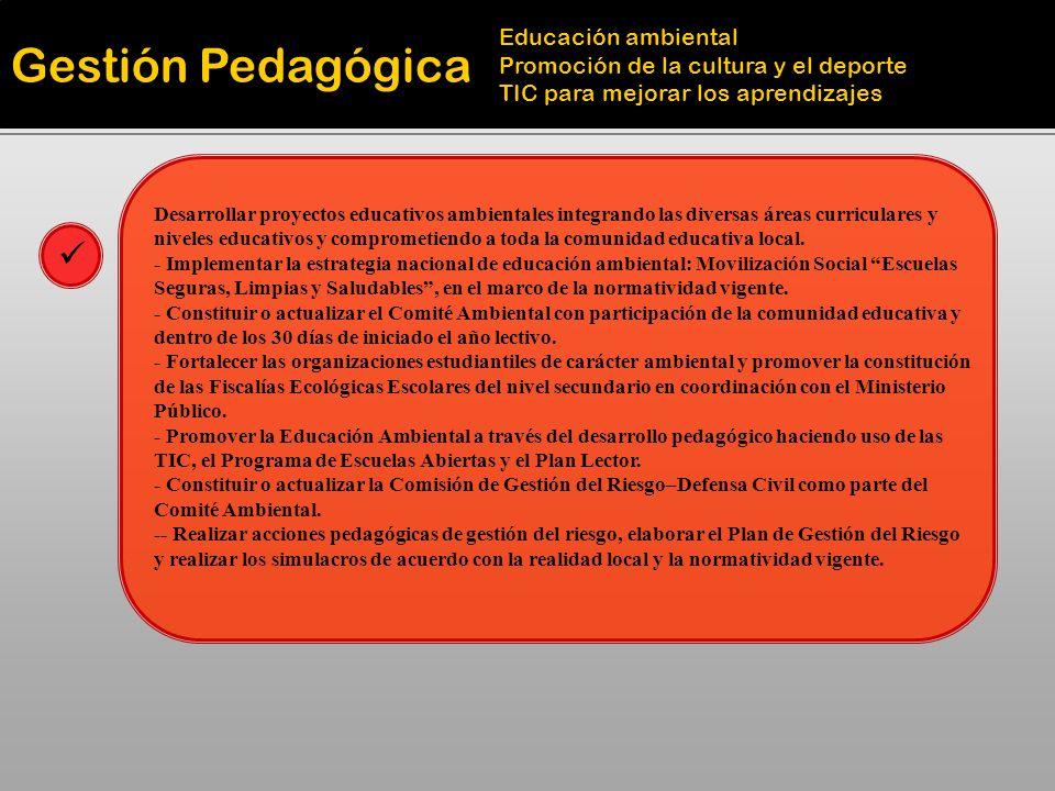 Gestión Pedagógica Educación ambiental Promoción de la cultura y el deporte TIC para mejorar los aprendizajes Desarrollar proyectos educativos ambient
