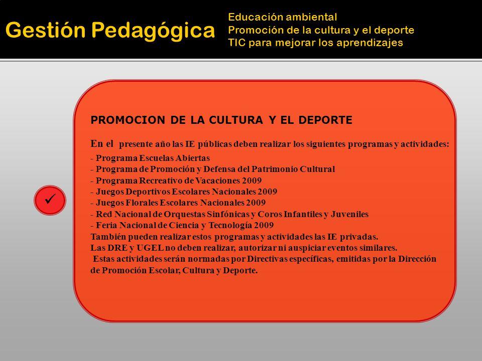 Gestión Pedagógica Educación ambiental Promoción de la cultura y el deporte TIC para mejorar los aprendizajes TICs PARA MEJORAR LOS APRENDIZAJES Deben integrar las TICs en el proceso educativo Esta presente en las etapas de la Planificación Curricular: PEI PCC, PA, UU.DD Y Sesión de Aprendizaje