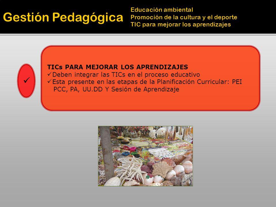 Gestión Pedagógica Educación ambiental Promoción de la cultura y el deporte TIC para mejorar los aprendizajes TICs PARA MEJORAR LOS APRENDIZAJES Deben