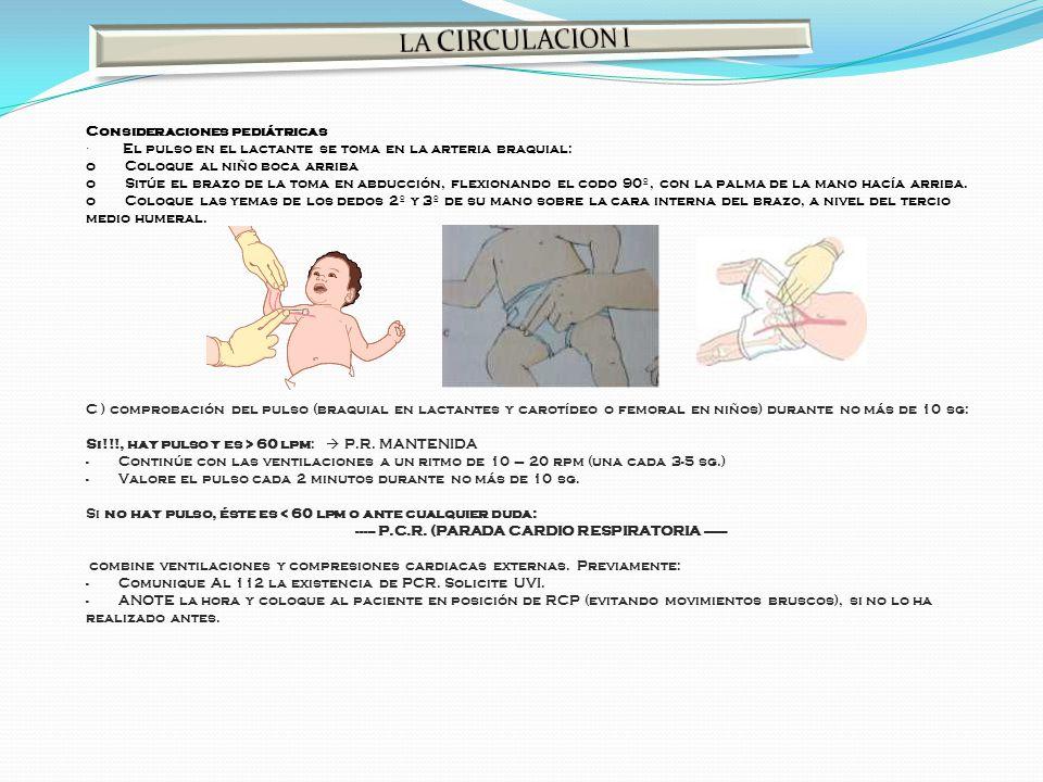 Consideraciones pediátricas · El pulso en el lactante se toma en la arteria braquial: o Coloque al niño boca arriba o Sitúe el brazo de la toma en abd