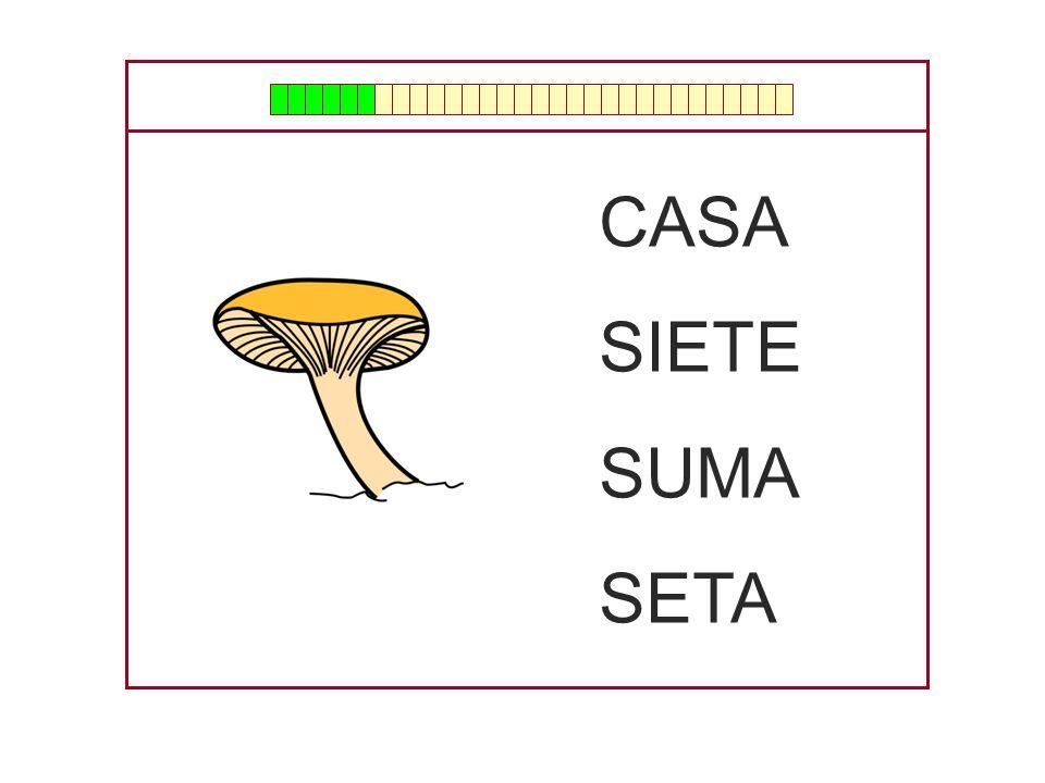 CASA SILLA MESA META