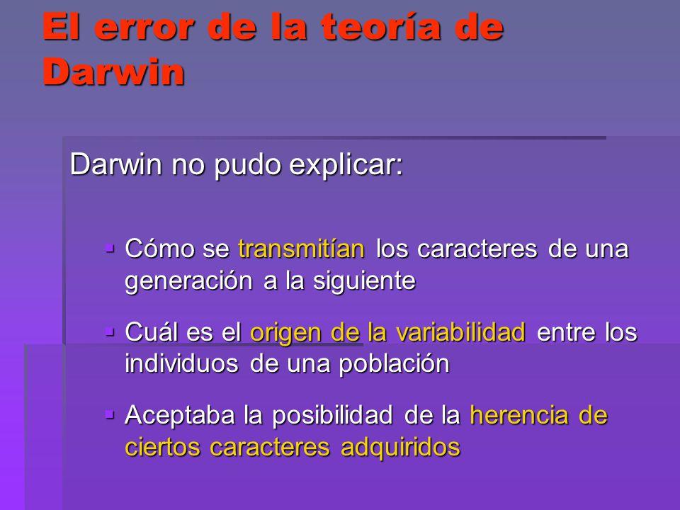 El error de la teoría de Darwin Darwin no pudo explicar: Cómo se transmitían los caracteres de una generación a la siguiente Cómo se transmitían los c