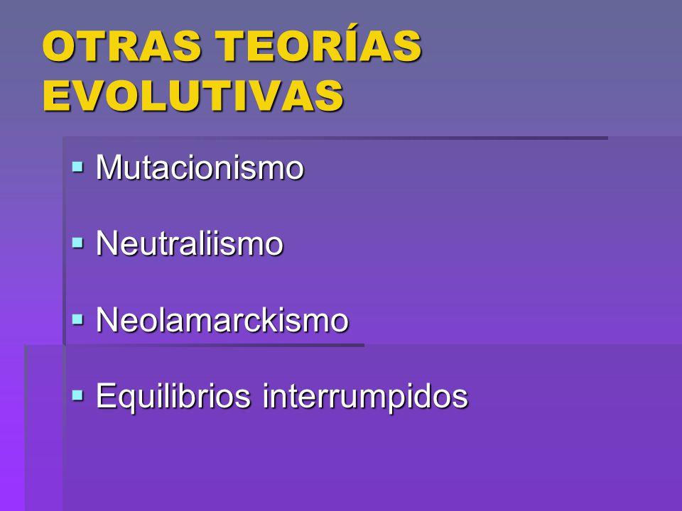 OTRAS TEORÍAS EVOLUTIVAS Mutacionismo Mutacionismo Neutraliismo Neutraliismo Neolamarckismo Neolamarckismo Equilibrios interrumpidos Equilibrios inter