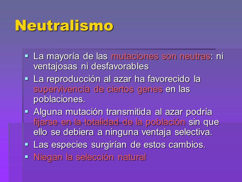 Neutralismo La mayoría de las mutaciones son neutras: ni ventajosas ni desfavorables La mayoría de las mutaciones son neutras: ni ventajosas ni desfav