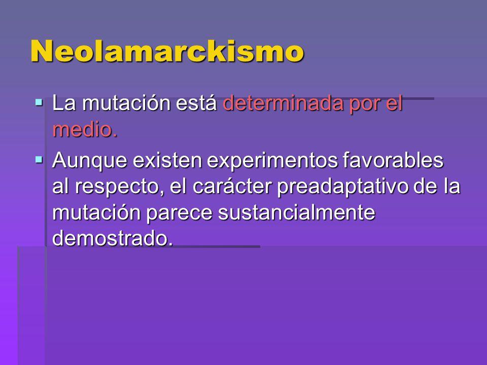 Neolamarckismo La mutación está determinada por el medio. La mutación está determinada por el medio. Aunque existen experimentos favorables al respect