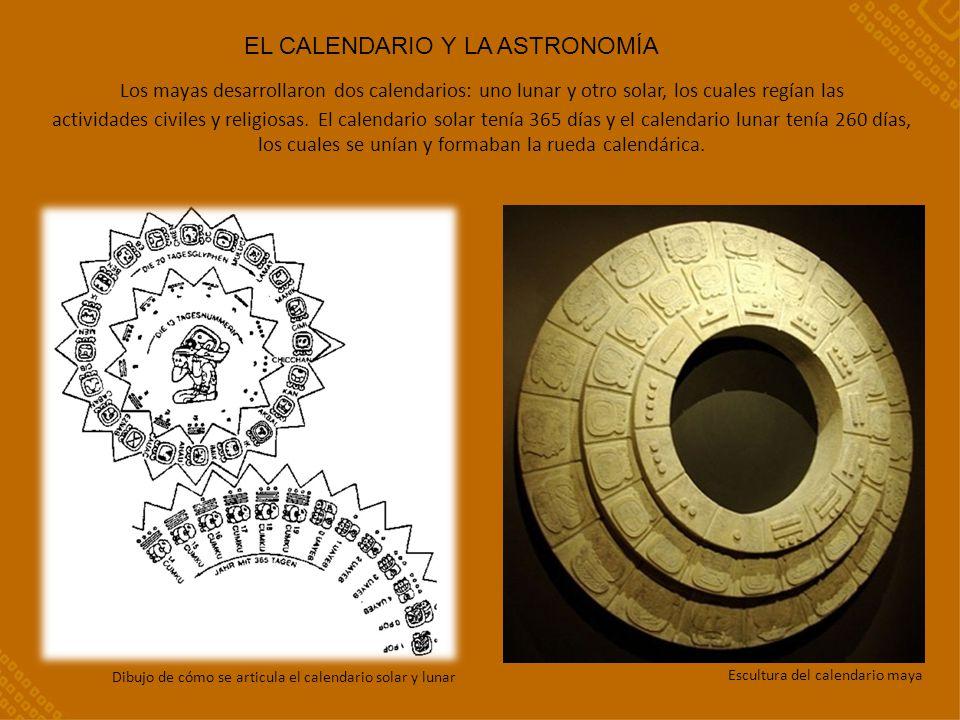 Los mayas desarrollaron dos calendarios: uno lunar y otro solar, los cuales regían las actividades civiles y religiosas.