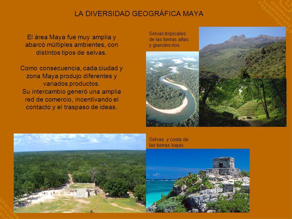 El área Maya fue muy amplia y abarcó múltiples ambientes, con distintos tipos de selvas.