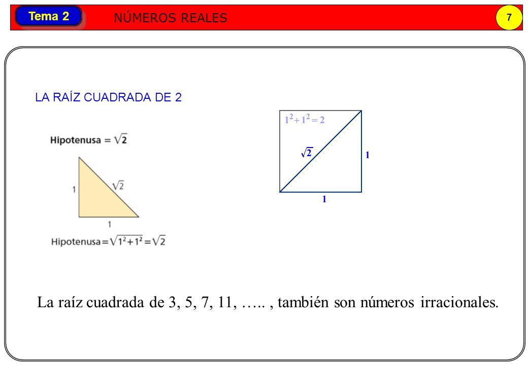 Números reales NÚMEROS REALES 7 Tema 2 LA RAÍZ CUADRADA DE 2 La raíz cuadrada de 3, 5, 7, 11, ….., también son números irracionales.