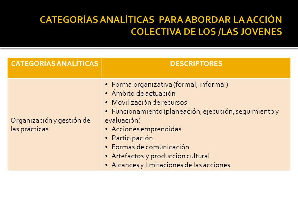 CATEGORÍAS ANALÍTICASDESCRIPTORES Organización y gestión de las prácticas Forma organizativa (formal, informal) Ámbito de actuación Movilización de re